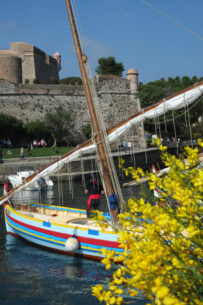 Journées du patrimoine 2020 - Zoom sur : La pêche à Collioure