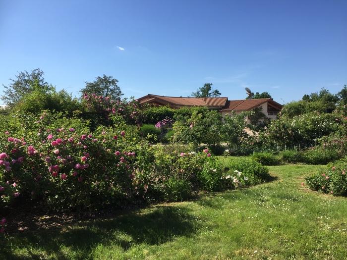 Journées du patrimoine 2020 - Visite de la roseraie