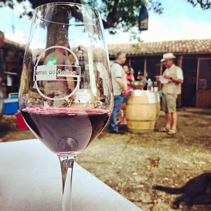 Visite et dégustation en compagnie des vignerons de Terres de Gaillac.