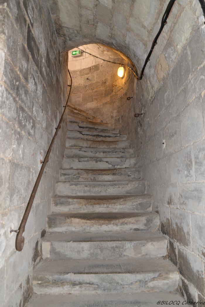 Journées du patrimoine 2019 - Hôtel de Ville : visite de la cave au clocher en nocturne