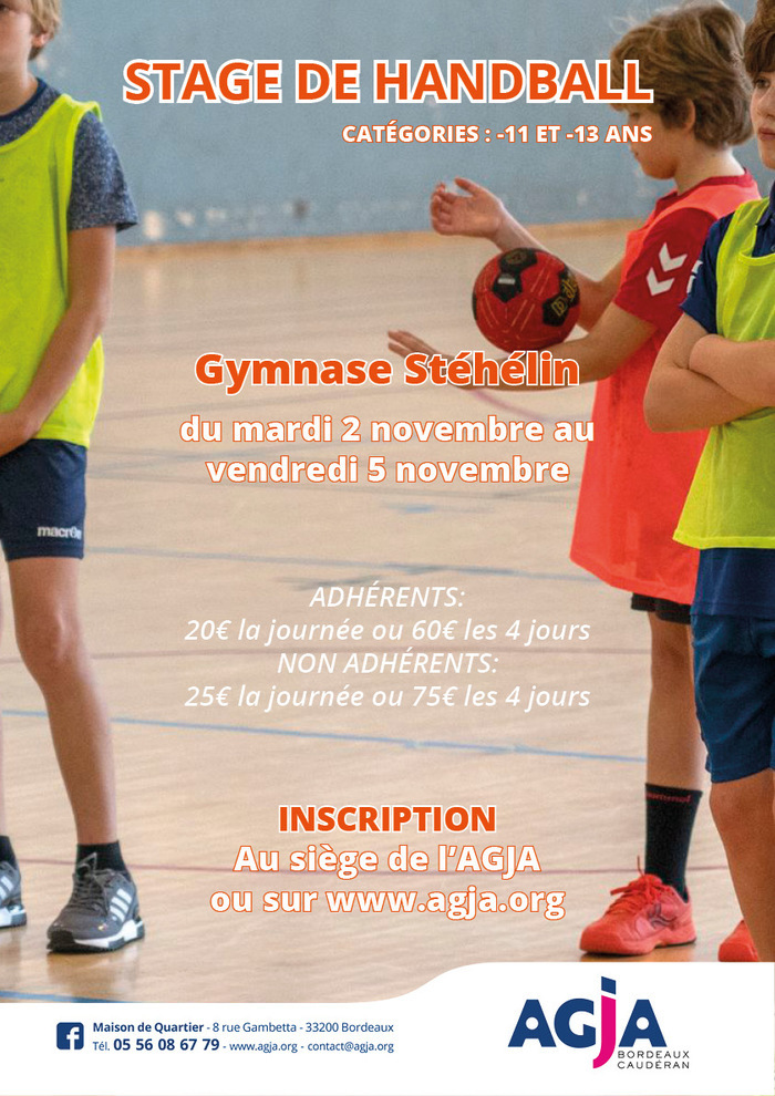 Stage de Handball