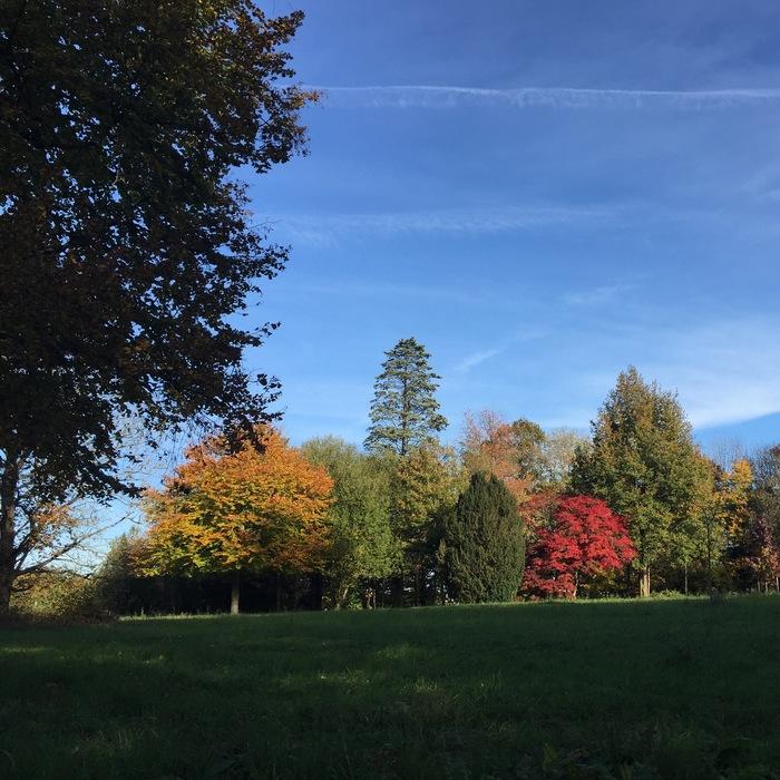 Journées du patrimoine 2020 - Visite libre du parc du château de Pouvrai