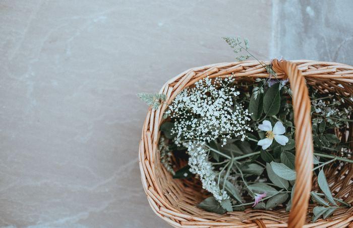Journées du patrimoine 2019 - Vannerie d'Ici et d'Ailleurs : quand les plantes sauvages s'en mêlent