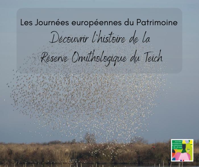 Journées du patrimoine 2020 - Découvrir l'histoire de la Réserve Ornithologique du Teich