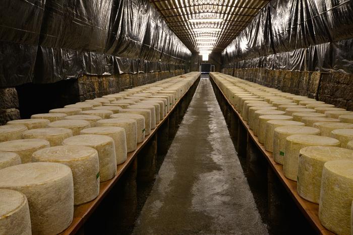 Journées du patrimoine 2019 - Visite guidée de la fromagerie et dégustation