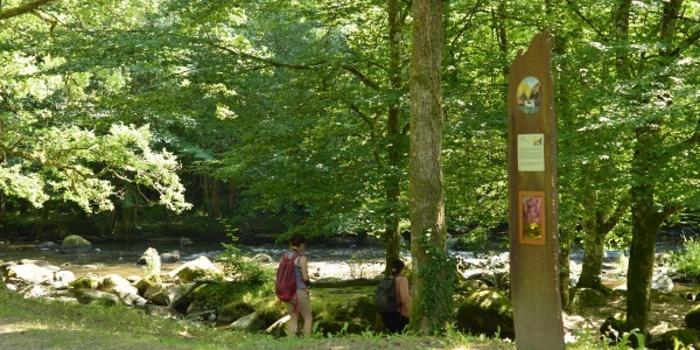 Journées du patrimoine 2020 - Randonnée guidée dans les pas des peintres de Crozant