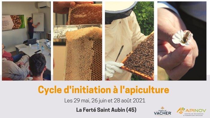 Formation à l'apiculture : Il n'est pas trop tard pour s'inscrire ! ?