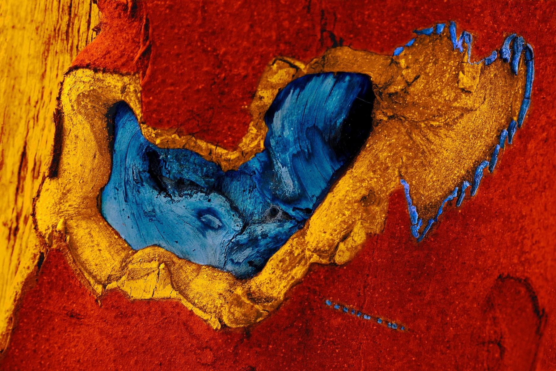 """Dans le cadre de l'exposition collective """"Vibrations"""", l'artiste Régine Chiffe immortalise la nature pour réaliser des oeuvres colorées et fascinantes."""