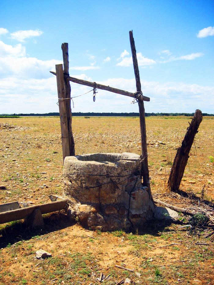La Crau, l'agriculture au service de l'eau pour l'Homme et la Nature. Et demain ? avec Terre & Océan