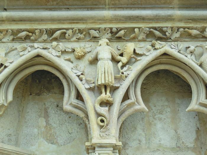 Journées du patrimoine 2019 - Le bestiaire de la cathédrale vu par un naturaliste
