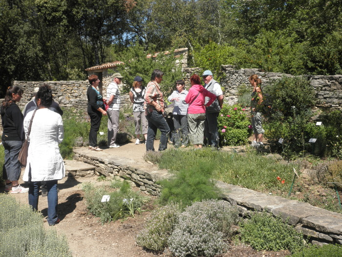 Journées du patrimoine 2019 - Visite guidée des jardins ethnobotaniques