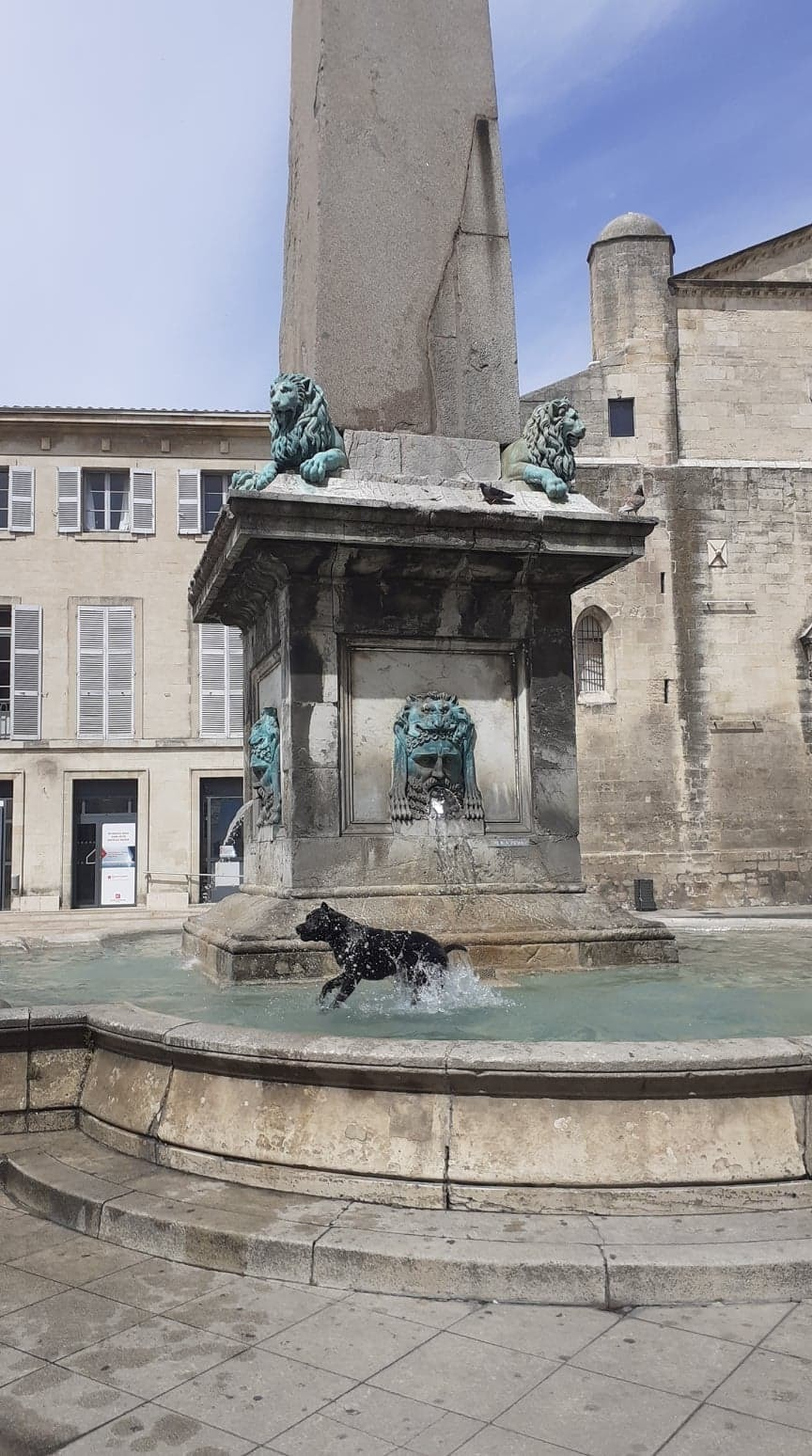 Visite guidée d'Arles