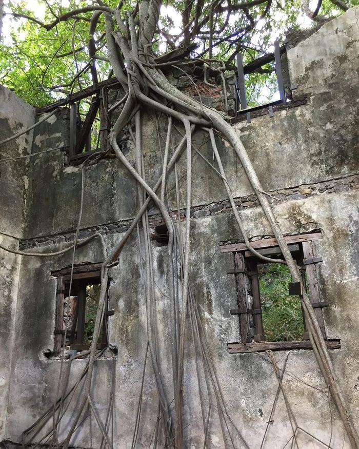 Journées du patrimoine 2019 - Visite du lazaret n° 2