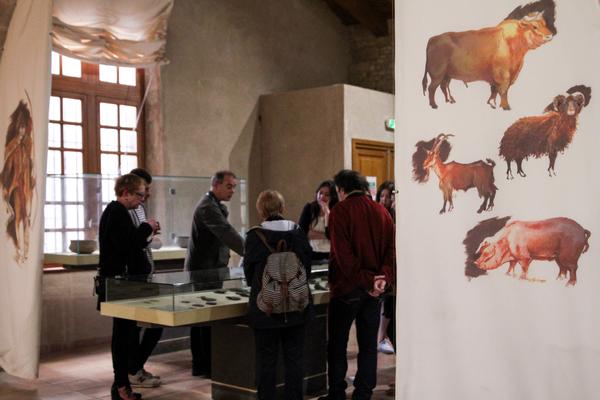 Nuit des musées 2019 -Du Paléolithique à l'Age de Fer, 350 000 ans de vie en Narbonnais