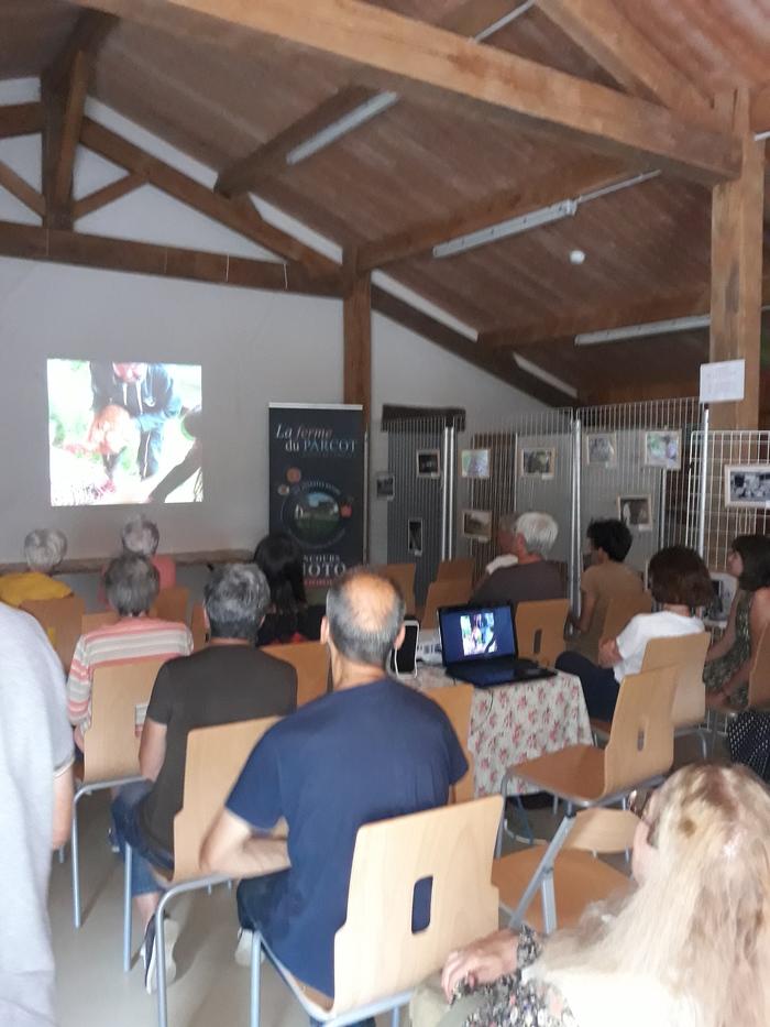 Journées du patrimoine 2020 - Deux conférences inédites !