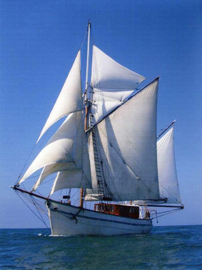 Journées du patrimoine 2020 - Sorties en mer à bord de l'Arawak