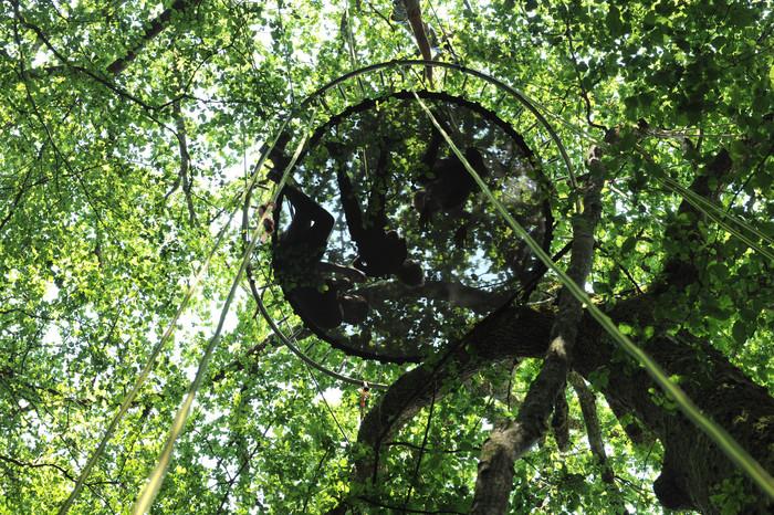 Relaxation dans les arbres