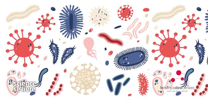 Atelier : Un microbe, qu'est-ce que c'est ?
