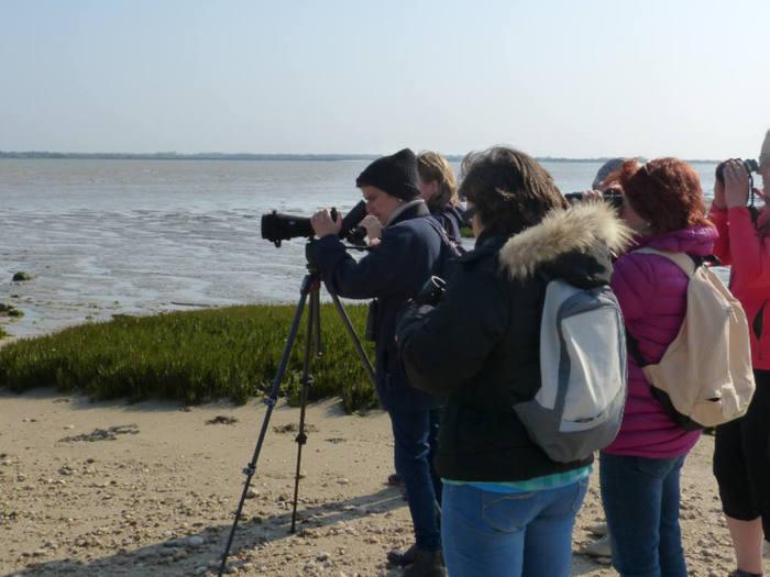 Journées du patrimoine 2019 - L'Île Madame, entre nature et culture