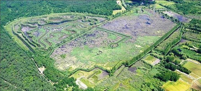 Journées du patrimoine 2019 - Visite guidée de la Réserve Naturelle Régionale du Marais de Larchant