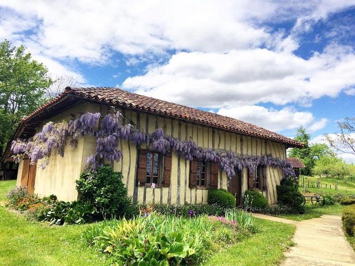 Journées du patrimoine 2019 - Visite libre des collections