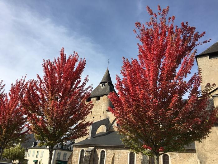 Journées du patrimoine 2019 - À la découverte des mystères de l'ancienne cathédrale