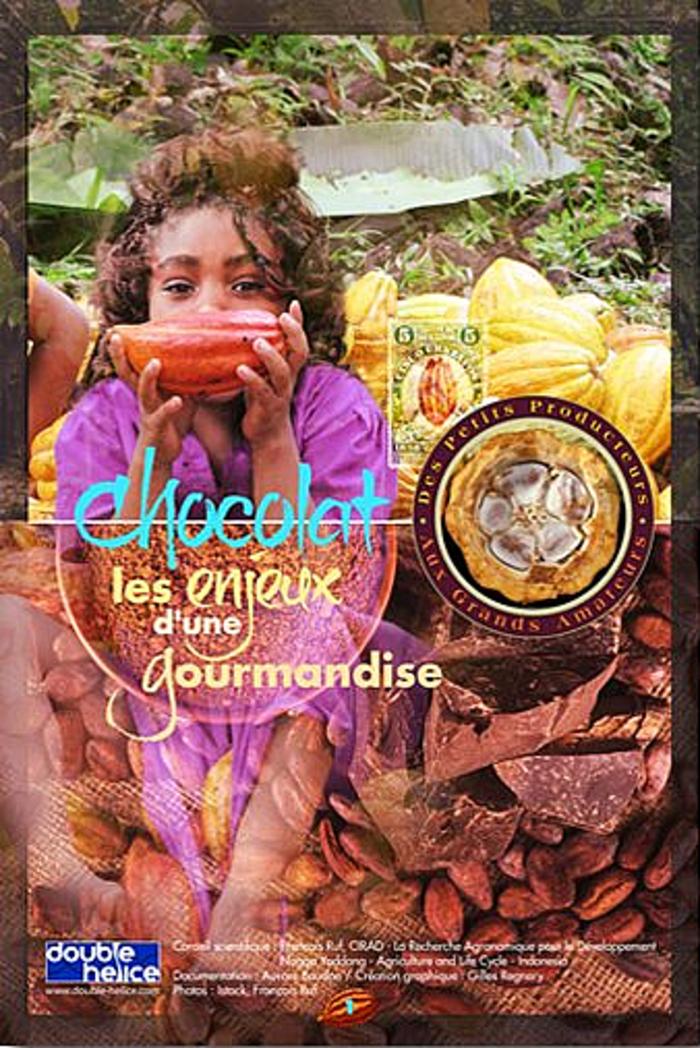 Chocolat, les enjeux d'une gourmandise