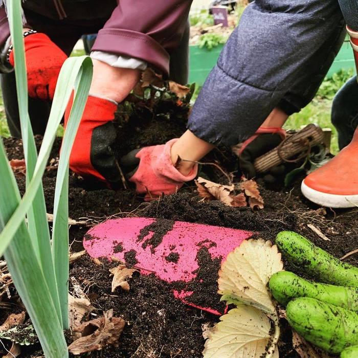 Visite d'un jardin expérimental au naturel et semis, plantations, multiplications avec Germaine Veille