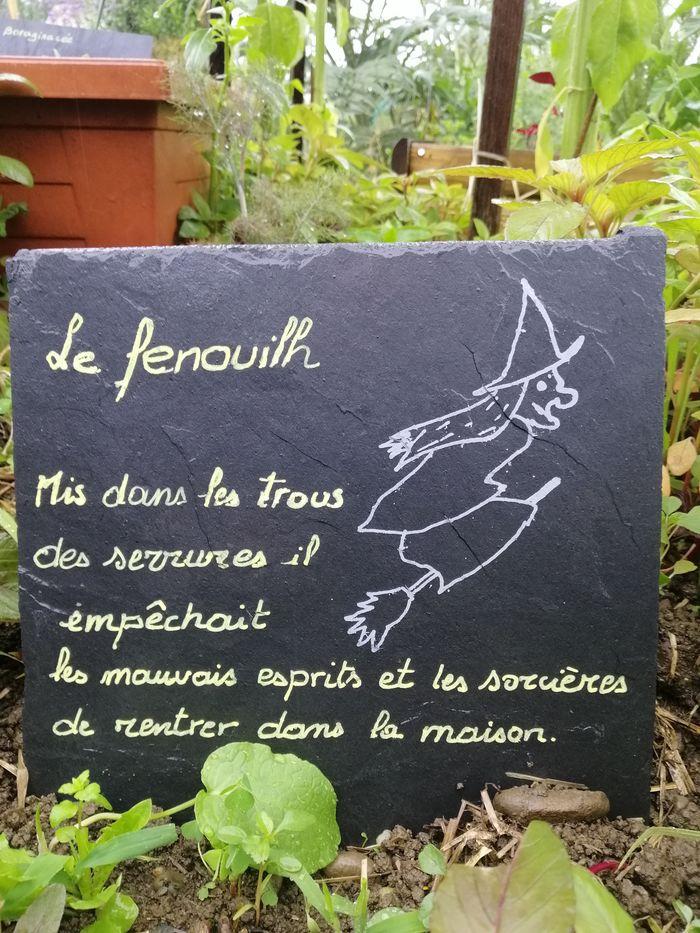 Journées du patrimoine 2019 - Quand les plantes racontent l'histoire des hommes...