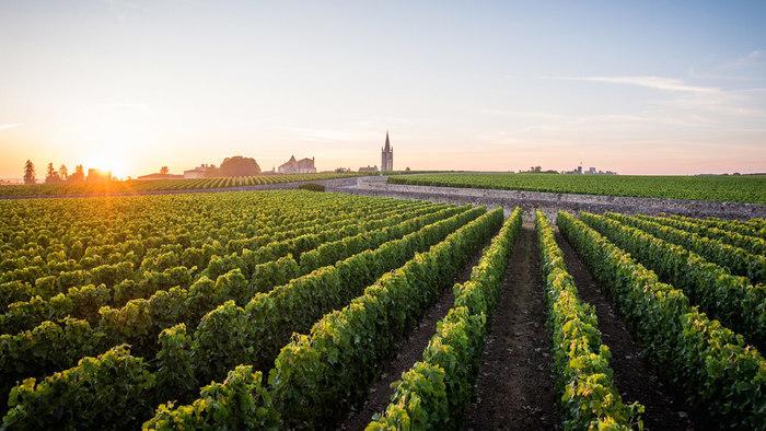 Atelier Grands crus de Bordeaux