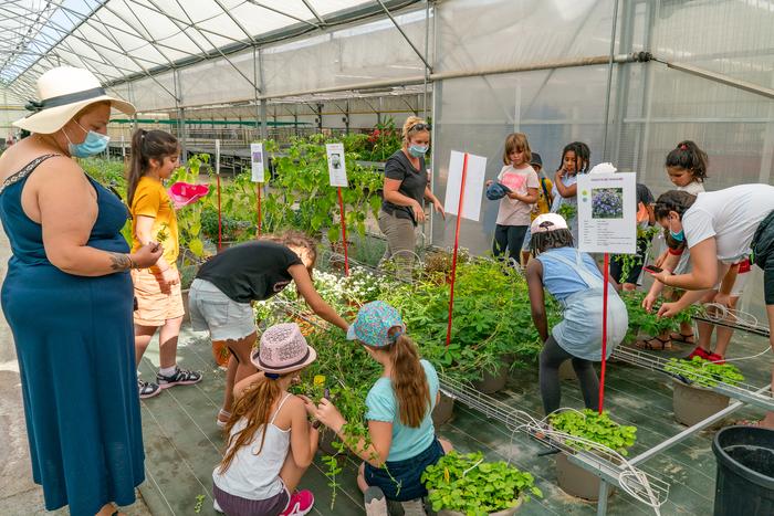 Journées du patrimoine 2020 - Les coulisses du Centre horticole (serres municipales) de Colomiers