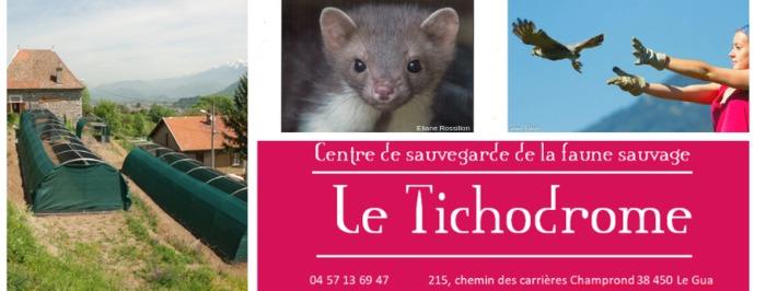 Journées du patrimoine 2020 - Après-midi découverte au Tichodrome