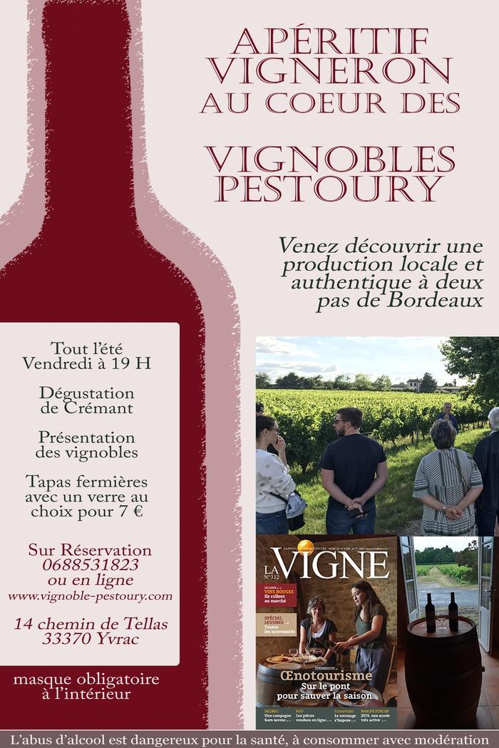 Apéritif Vigneron au coeur des Vignobles Pestoury