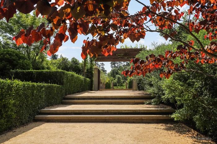 Journées du patrimoine 2019 - Évasion sensorielle aux jardins pour les Journées Européennes du Patrimoine