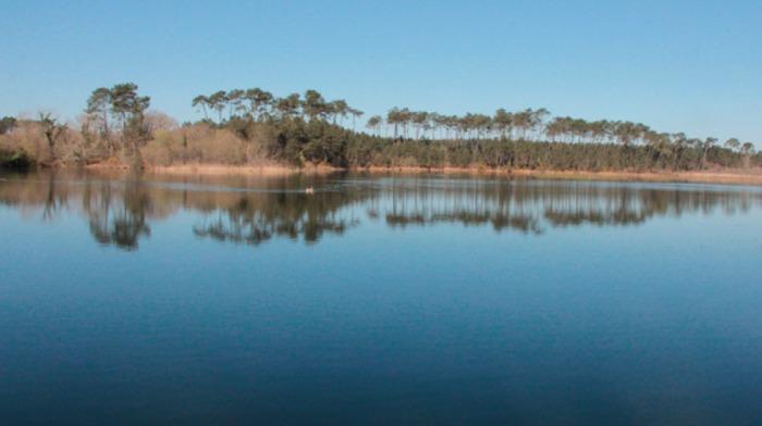Journées du patrimoine 2020 - Visite : Abesse au naturel