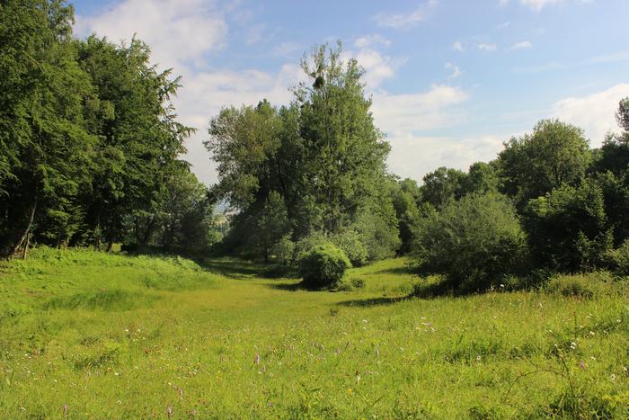 Journées du patrimoine 2019 - Visite guidée pour découvrir le patrimoine naturel de Sainte-Eugénie