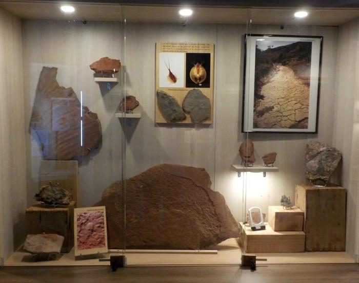 Journées du patrimoine 2019 - Visite guidée de la nouvelle exposition