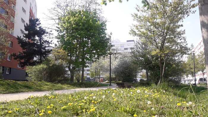 Journées du patrimoine 2020 - Balade nature au cœur du quartier de Cronenbourg