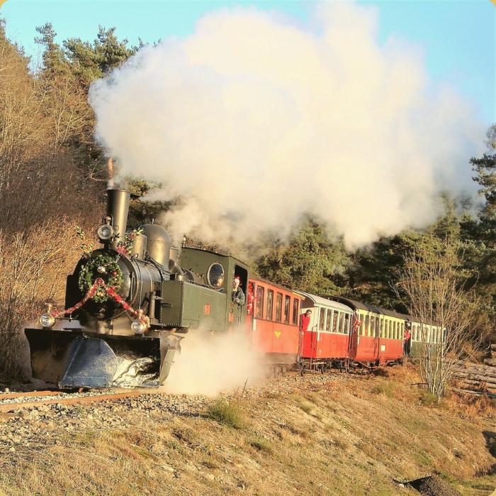 Journées du patrimoine 2019 - Tour en train à vapeur Velay-Express