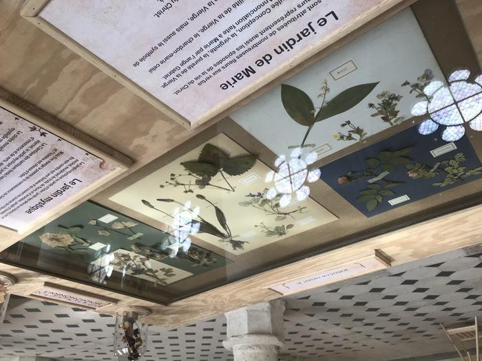 Journées du patrimoine 2020 - Exposition Jardins d'abbayes, les plantes d'apothicaire