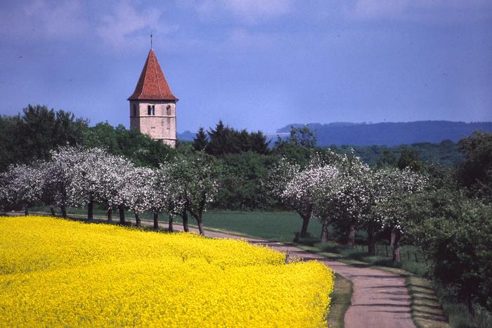 Journées du patrimoine 2019 - Visite libre de la Tour Usselskirch