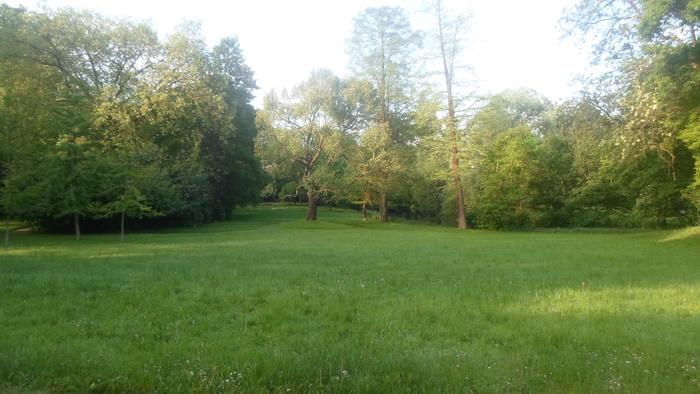 Journées du patrimoine 2020 - Balade découverte libre d'un parc de style anglais