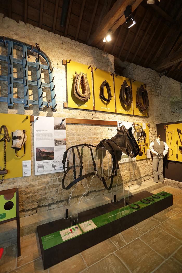 Journées du patrimoine 2019 - Exposition : A hue et à dia ! Histoire des chevaux de trait en Normandie
