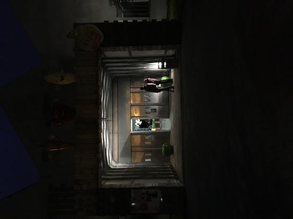 Nuit des musées 2019 -Cité Nature by night : n'oubliez pas votre lampe torche...