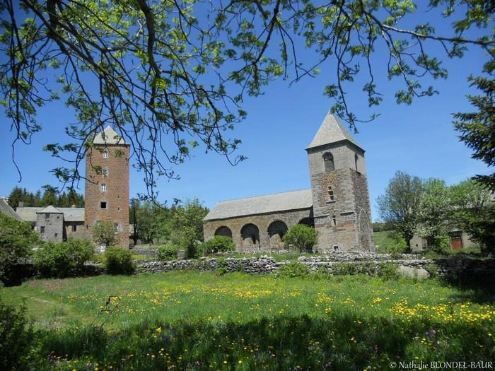 Journées du patrimoine 2019 - Visite guidée des vestiges de la Domerie d'Aubrac (Monastère-hôpital du XIIe siècle)