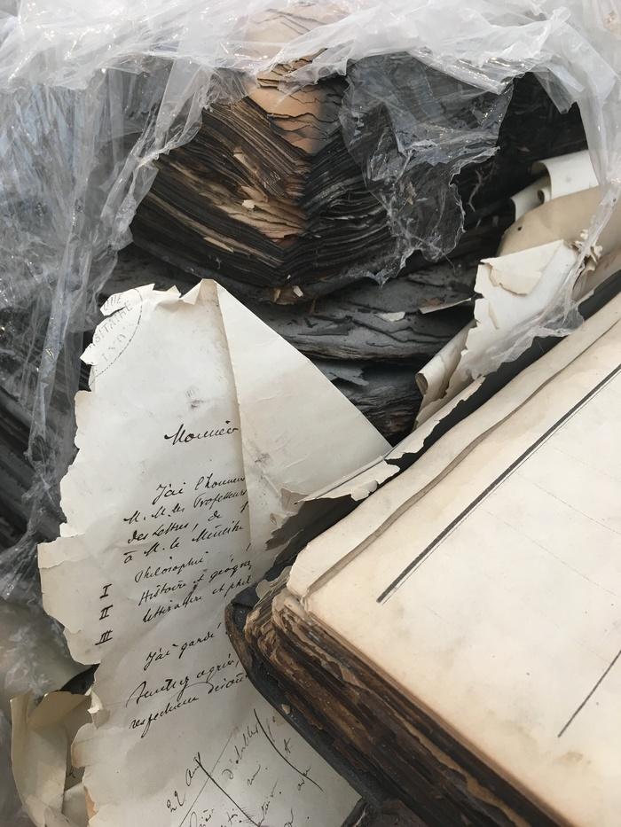 Journées du patrimoine 2019 - L'incendie de la Bibliothèque centrale en 1999 ; 20 ans après les cendres...les souvenirs