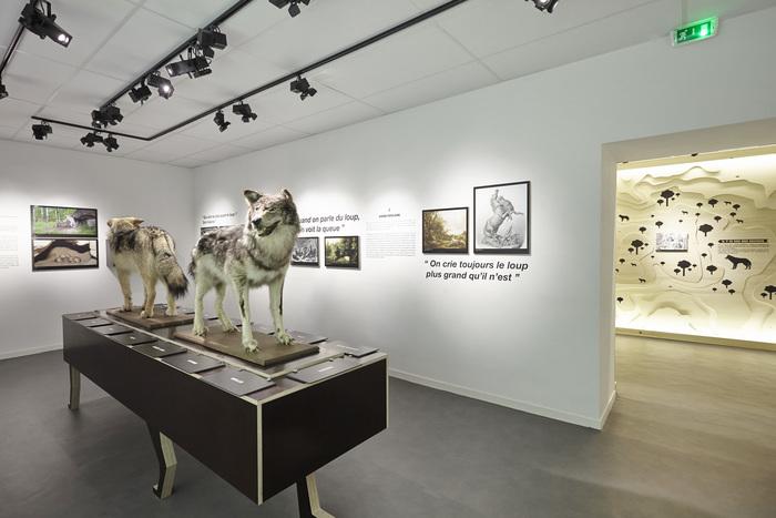 Journées du patrimoine 2020 - Visite libre et gratuite du Musée du Loup