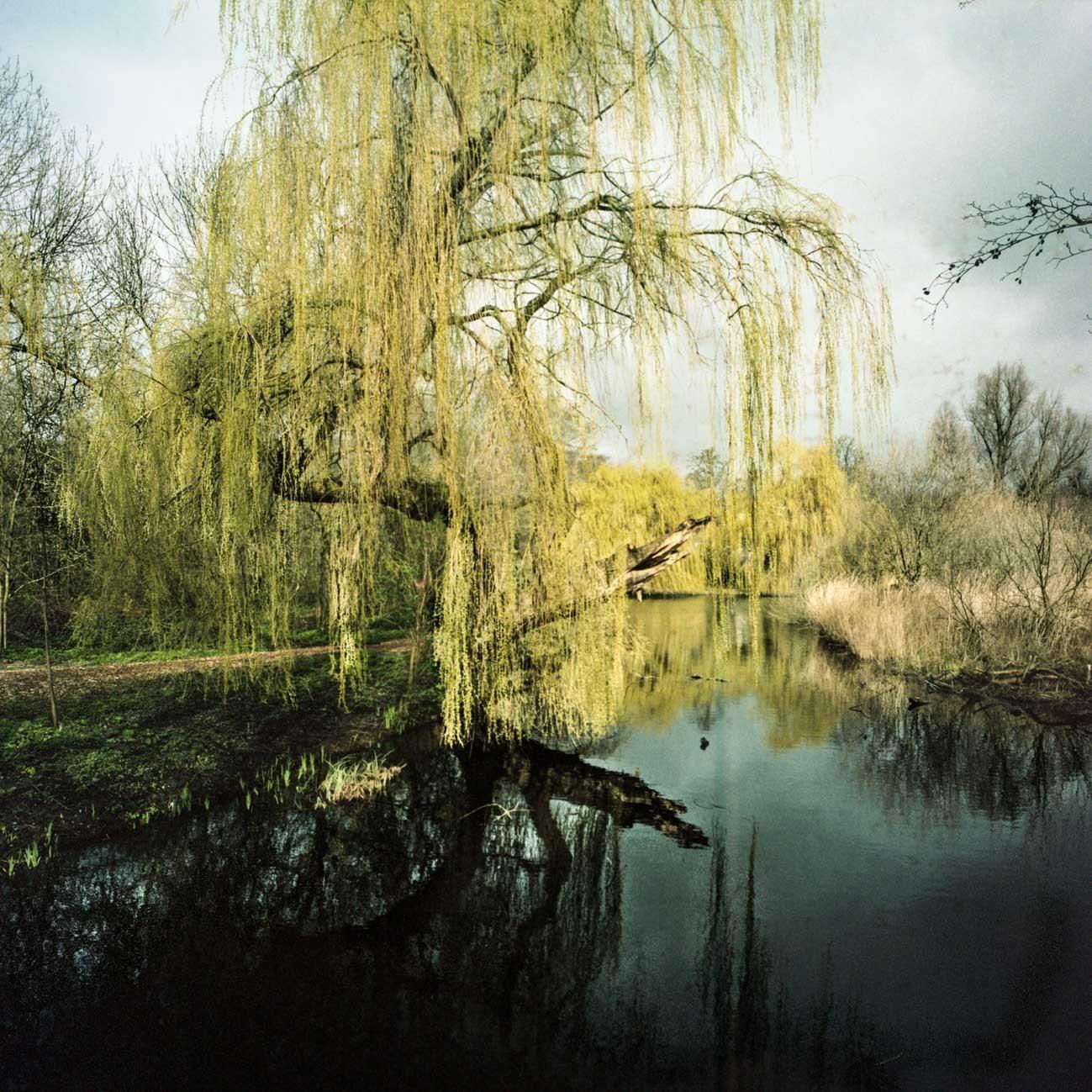 Daniel Robles immortalise des paysages où l'on se retrouve suspendu entre le ciel et la terre, la vie et la mort, l'ombre et la lumière.