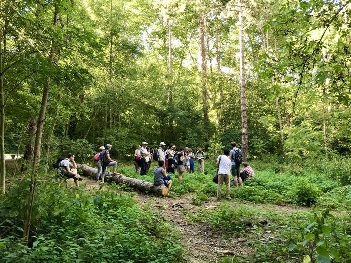 Randonnée botanique et poétique à la journée (St-Rémy-Lès-Chevreuse)