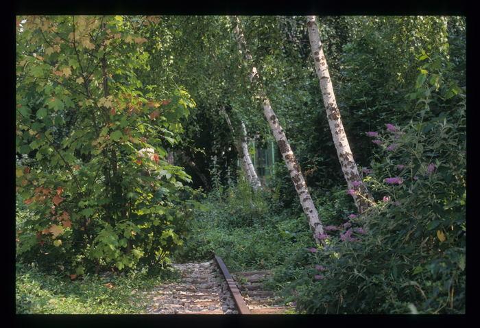 Journées du patrimoine 2019 - Exposition « Le raccordement de la voie ferrée, de 1883 à 1979 »